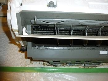 P1100658-2.jpg